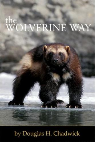 Wolverine_way_cover
