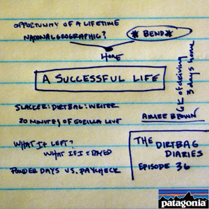 A_successful_life