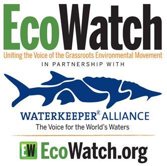 Ecowatch 2