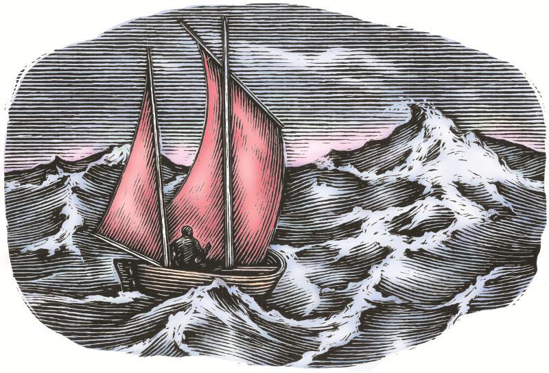 Cormorant_boat_2