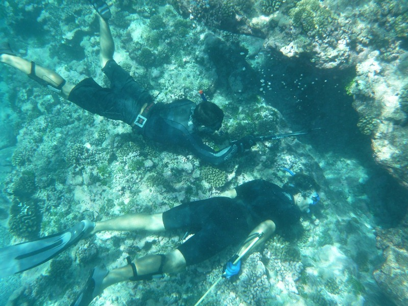 4_spearfishing