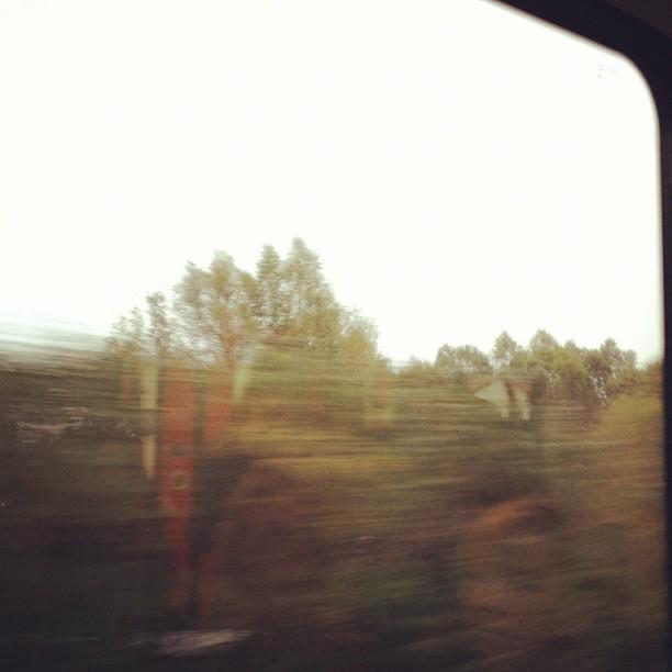4_majka_train