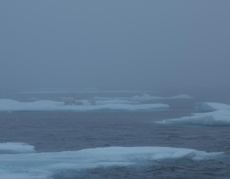 Greenland_9
