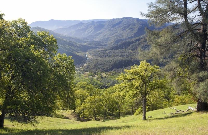 Berryessa-Cache-Cr-Wilderness-Bob-Wick-Photo
