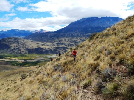 Building Patagonia National Park: A Decade-Long Partnership with Patagonia, Inc.