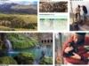 Trying to Be Responsible – Patagonia Environmental & Social Initiatives 2014