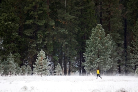 Lost in the Sierra Nevada During a 50K
