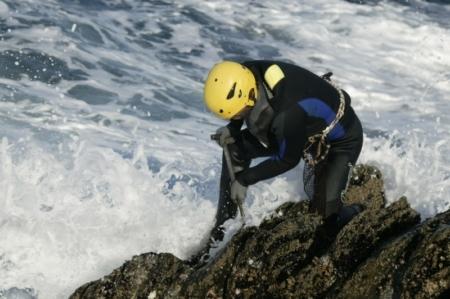 Percebeiros: The Hunter-Gatherers of Europe's Rugged Coastlines