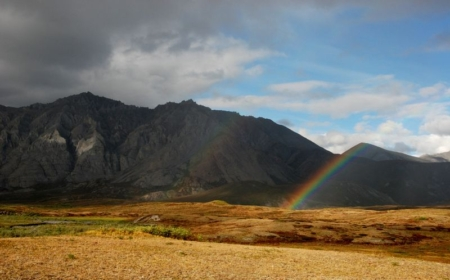 President Obama Calls for Wilderness Protection of the Coastal Plain of the Arctic National Wildlife Refuge