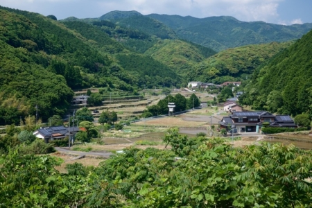 """""""DamNation"""" Behind the Scenes: Help Stop Ishiki Dam in Japan"""