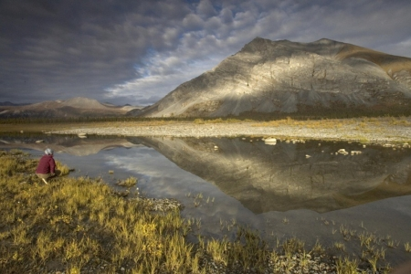 I Heart The Arctic National Wildlife Refuge, Here's Why You Should Too