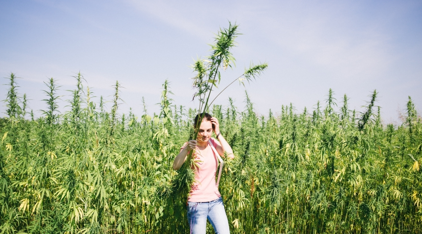Harvesting Liberty: A short film about growing hemp in the