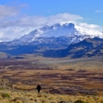 Photo: Conservacion Patagonica