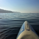 Epileptic Opportunity: Paddling Towards a Cure