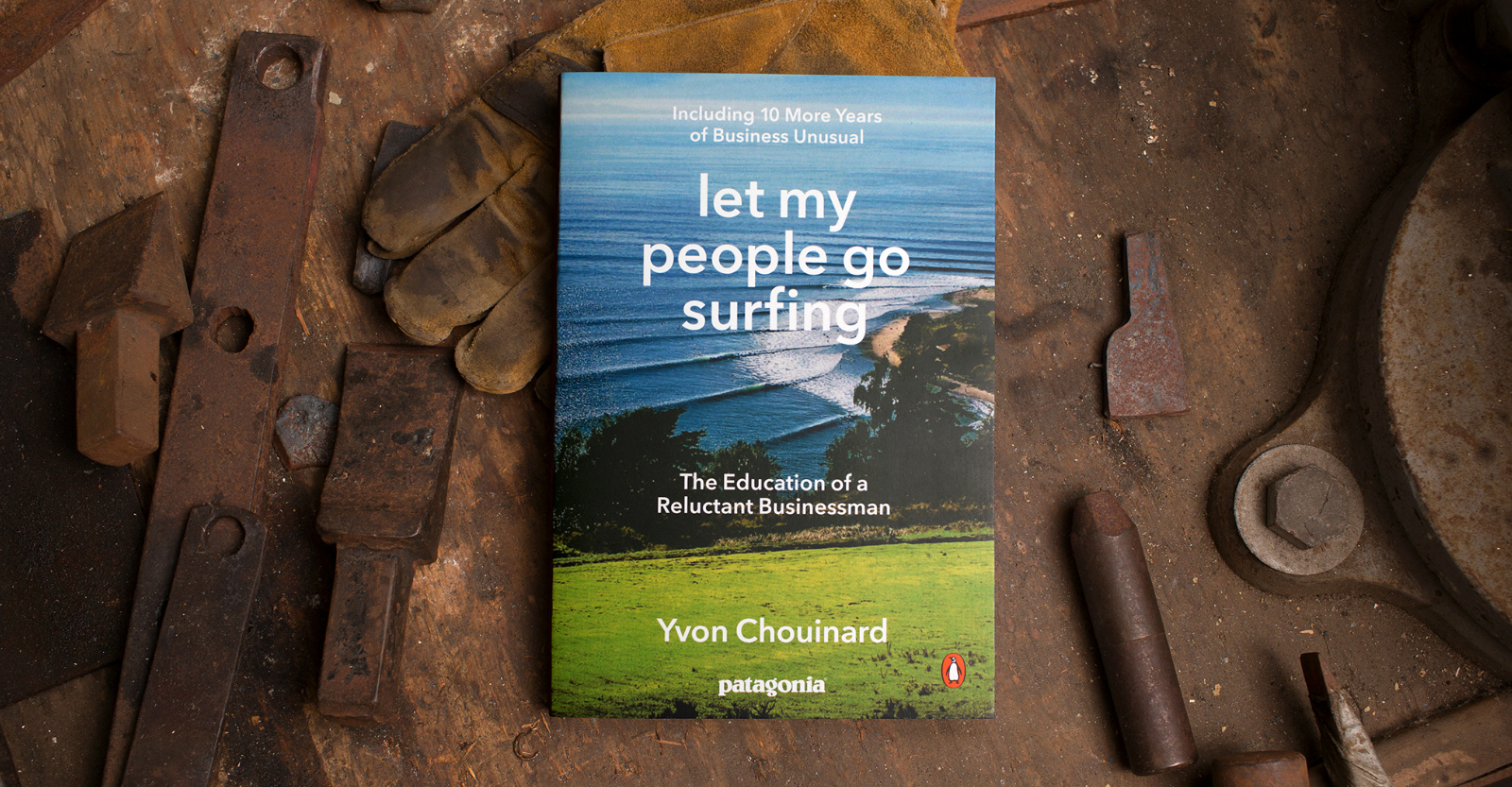 Introducing a New Edition of Yvon Chouinard&20;s