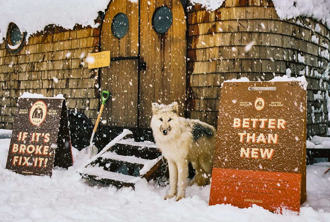 Things got wild in Canada. Timber, the Artic wolf, was our good luck charm and brought the snow with him. Photo: Kern Ducote
