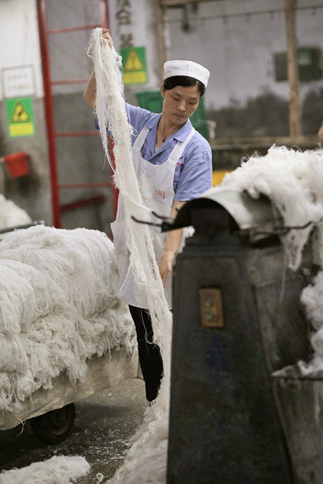 The fibers need to be washed several times until they soften. This worker is pulling apart strands of wet fiber, and then running them through a machine that helps further separate the strands . Photo: Lloyd Belcher