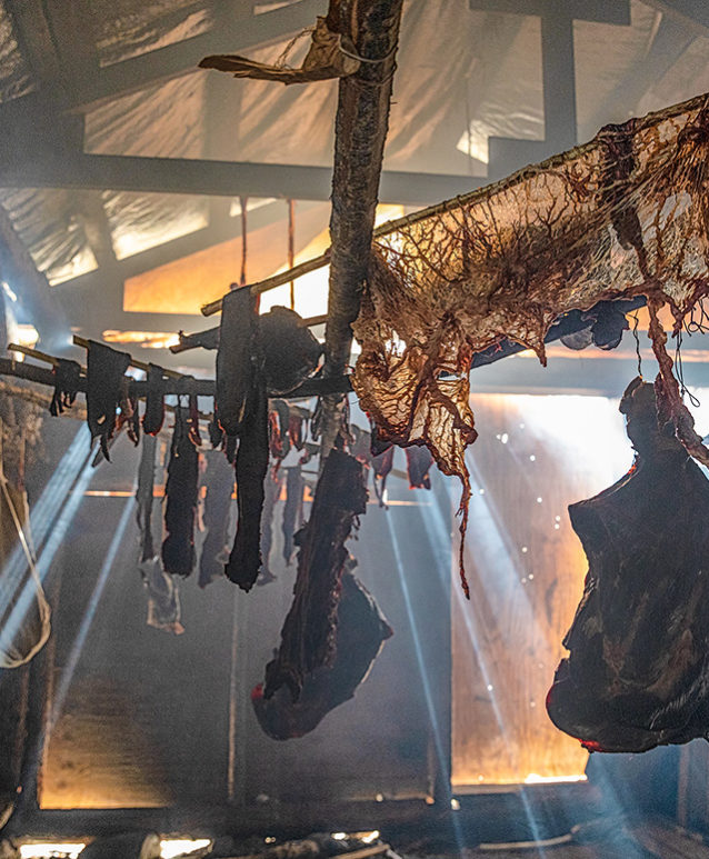Caribou meat is hung in a smoke cache, then stored in freezers for the winter. Youth learn from the elders how to prepare and store food to last through the cold months. Photo: Keri Oberly