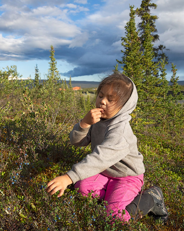 Arianna Gilbert takes a tasting break while learning how to forage for berries, a Gwich'in tradition. Photo: Keri Oberly