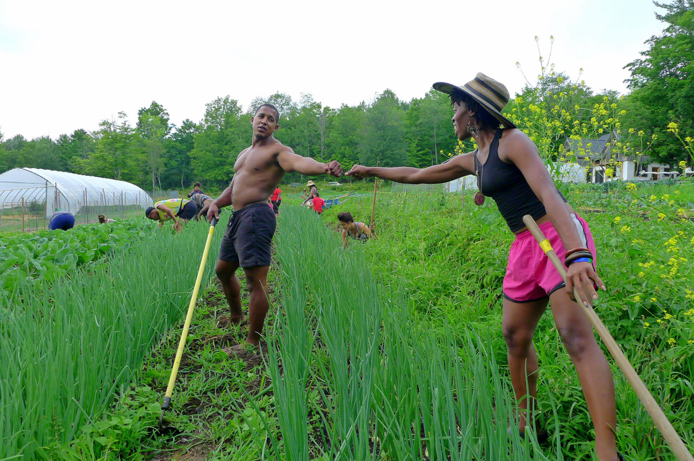 "Fist bump between two participants in Soul Fire Farm's Black Latinx Farmers Immersion, a weeklong, rigorous introduction to small-scale sustainable farming that balances the nerdy explication of concepts like ""soil cation exchange capacity"" with the cultural and historical teachings necessary for Black and Brown people to heal their relationships to land. Photo: Leah Penniman"
