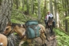 It Takes All Kinds: Horses and Bikes in the Washington Backcountry