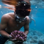Gardening Corals before They Are Gone