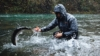It's All Home Water: Oregon Steelhead