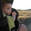 Backyard Adventures: Little Wild Places