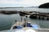 Taking Back Puget Sound