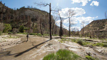 When a River Burns