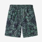 Boys' Baggies™ Shorts - Rain Fern Wash: Nettle Green (RFNG)