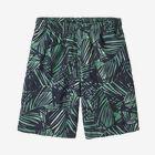 Boys' Baggies™ Shorts, Rain Fern Wash: Nettle Green (RFNG)