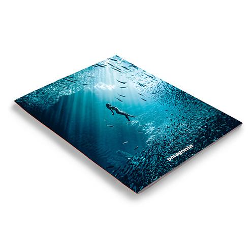 2016 Surf Catalog